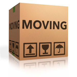Pushed-into-Moving-Home